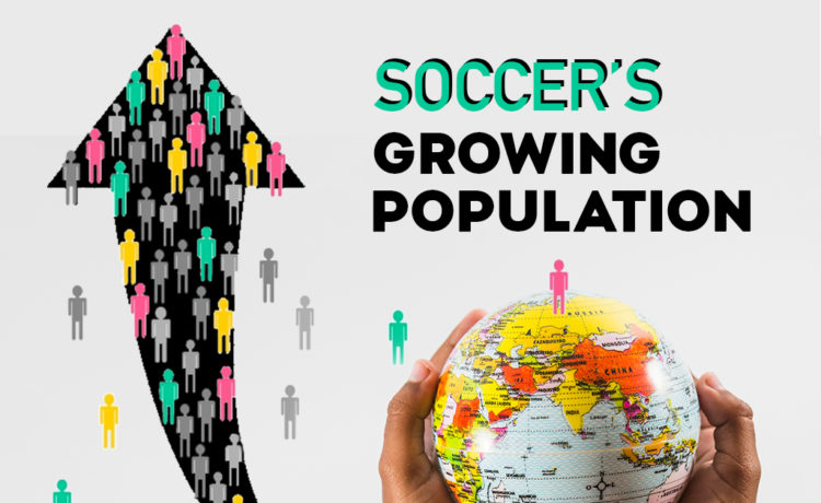 Soccer and its fan base
